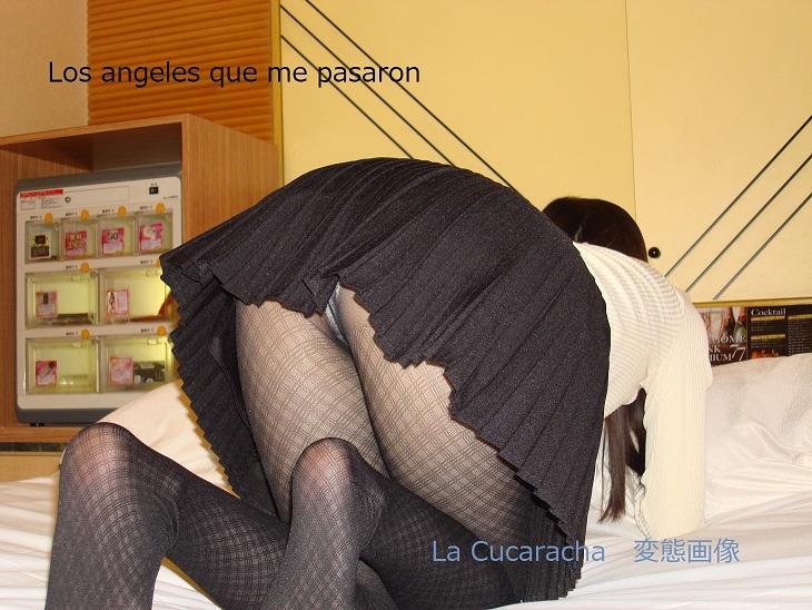 うさちゃんとハメ撮り制服編 写真集 (写真19枚、特典動画ZIPファイル付)